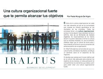 13_Cultura organizacional fuerte.png