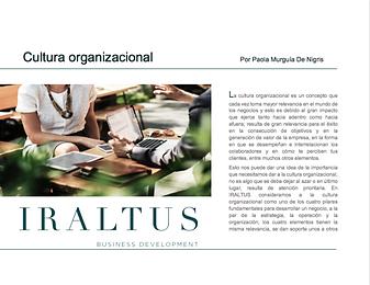 05_Cultura organizacional.png