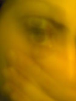 Spettri Androgini_#3, 2003-2004
