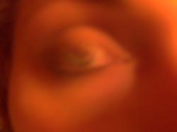 Spettri Androgini_#10, 2003-2004