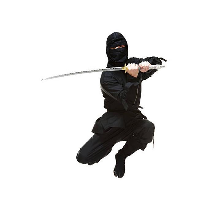 ninja preformance