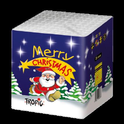 TB55 Merry Christmas