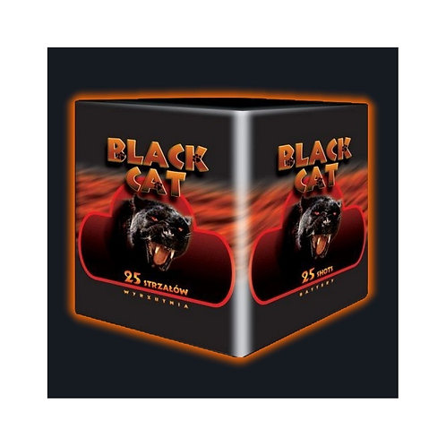 JW42 - BLACK CAT