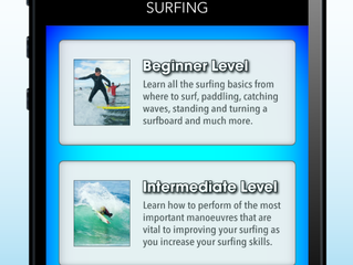 iSurfer gets high praise from inertia.com