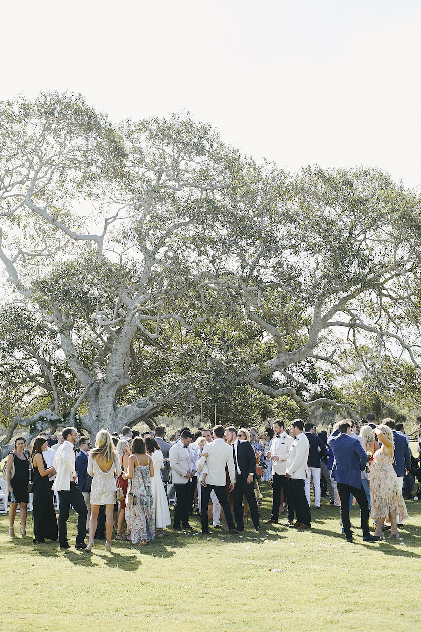 The fig tree used as a spectacular backdrop for a wedding ceremony