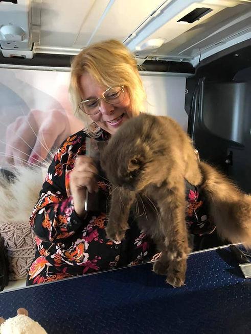 Kat Beertje geeft zich over aan de trimb