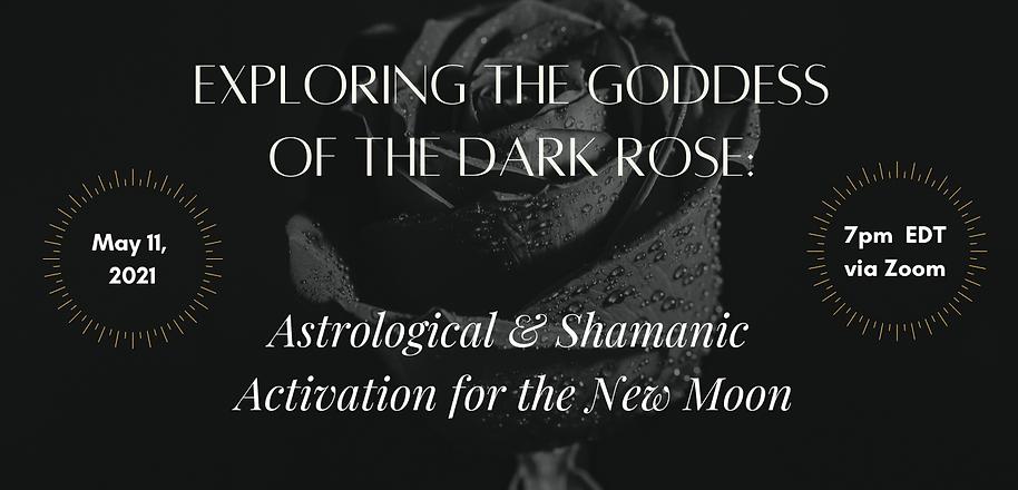 dark rose website.png