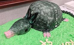 Armadillo Grooms Cake