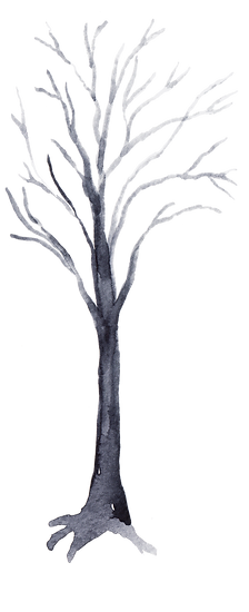 Tree 5.png