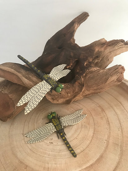 Dragonfly's dreaming (set 2)