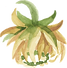 Flower green gold.png