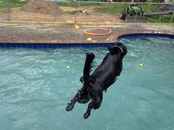 Dash diving