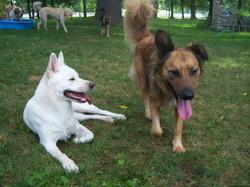 Alta & Lila