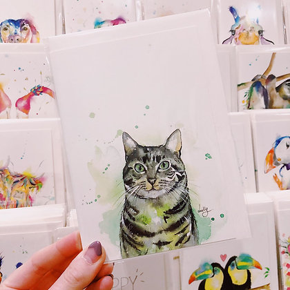 Greetings card - Curious Cat