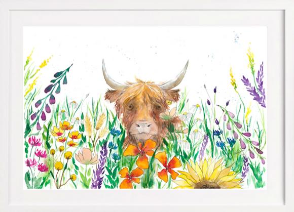 Highland Cow A4 Print (Unframed)