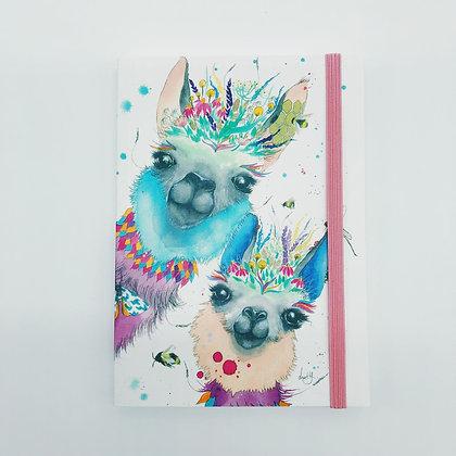 Lluscious Llama's Notebook
