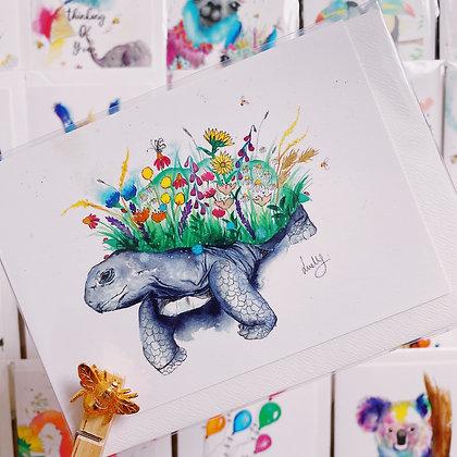 Greetings card - Tortoise