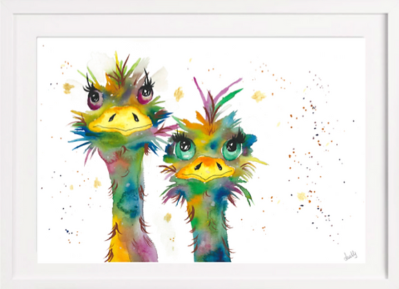 Crazy Ostrich Sisters A4 (Unframed)
