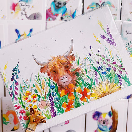 Greetings cards - Highland Cow