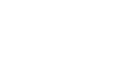 DST BULDING CULTURE.png