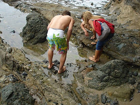Exploring the ocean low tide pool.jpg