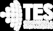 logo_tes_branco-removebg-preview_edited.