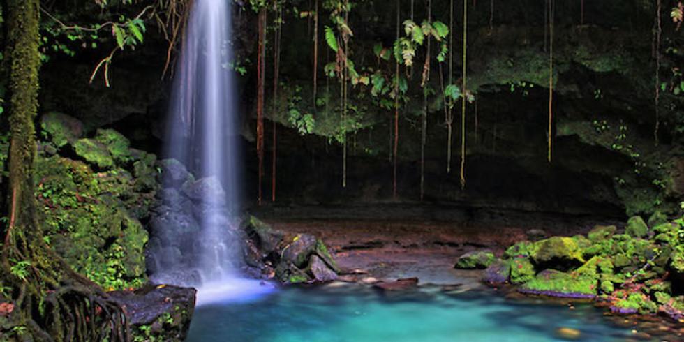 Dominica Retreat 2020