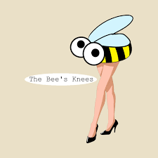 the bee's knees: 5 essentials for happy knees