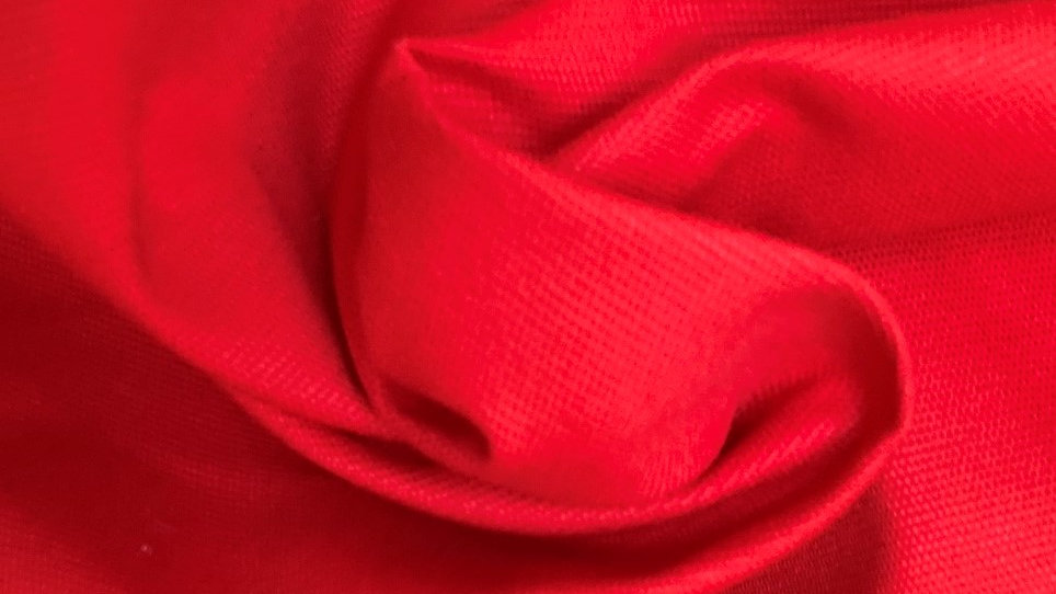 Fabric : Red Cotton Canvas