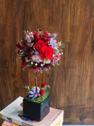 乾燥不凋花球小樹—線上課程