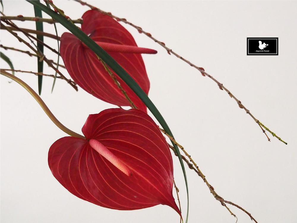 行與線風格盆花