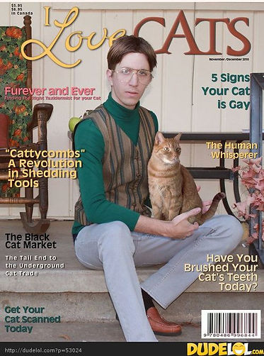 cats cover.jpg
