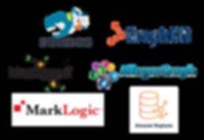 Data Lens Product - SemanticGraphs.png