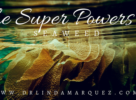 The Superpowers of Seaweed