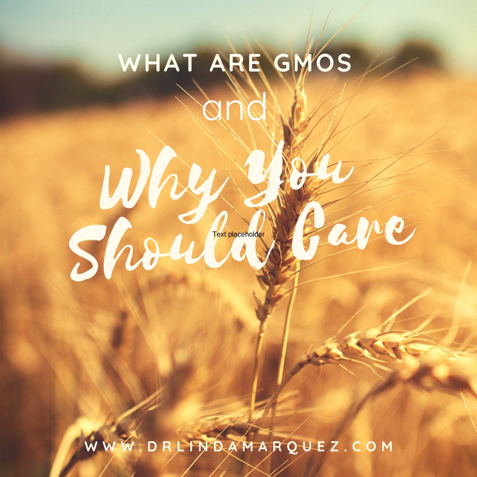 What Are GMOs and Why You Should Care