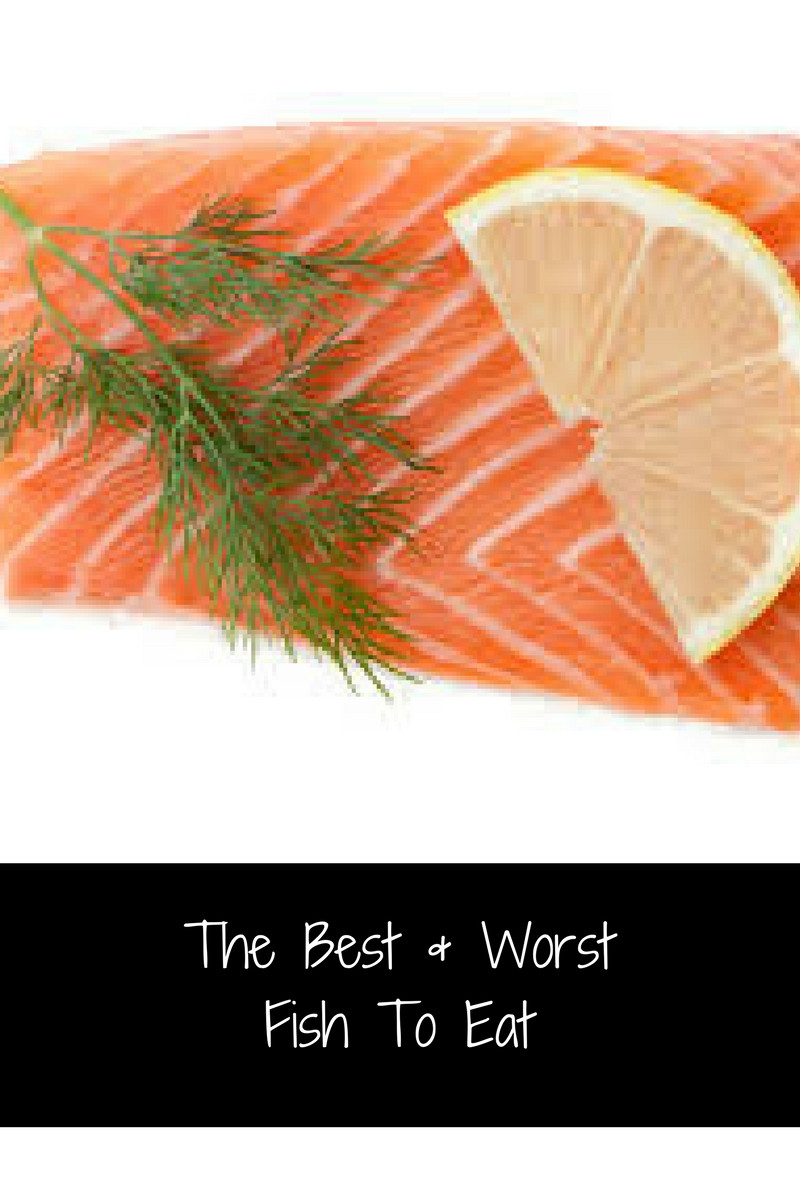The Best & Worst Fish To Eat