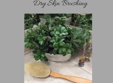 The Health Benefits of Skin Dry Brushing