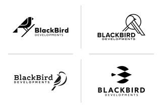 BLACKBIRD_LOGO_CONCEPTS.jpg