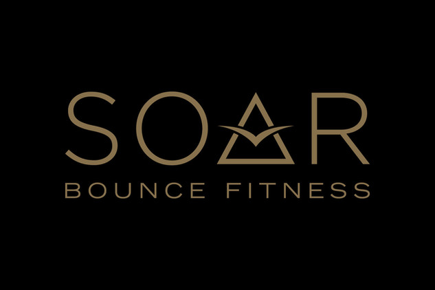 SOAR_LOGO_REVERSED.jpg