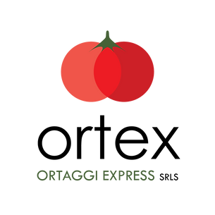 Ortex-logo.png