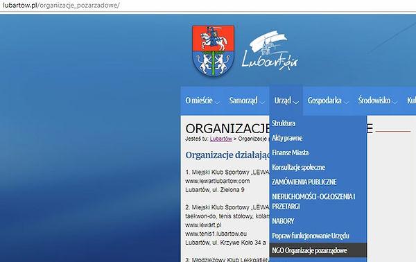 Organizacje pozarządowe Lubartów ngo