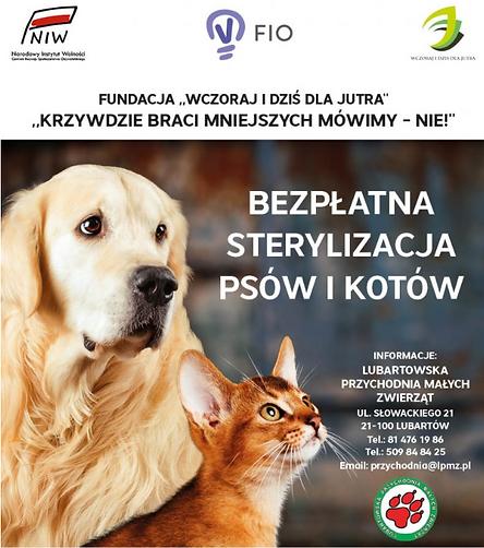 Bezpłatna sterylizacja psów i kotów.png