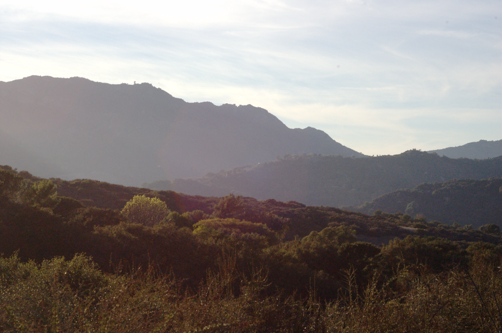 Topanga_Canyon_trail.png