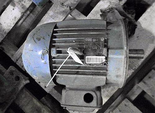 Motor de 3 hp y 1765 rpm #101
