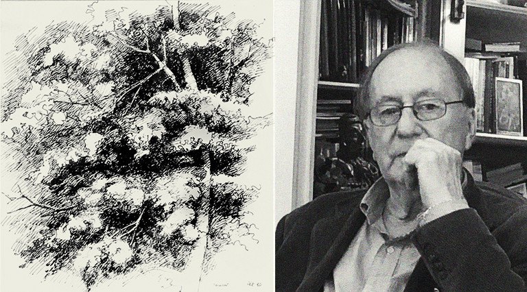 © arbre / Jean-Paul Emonds-Alt & Jean Noël Capart architecte-paysagiste