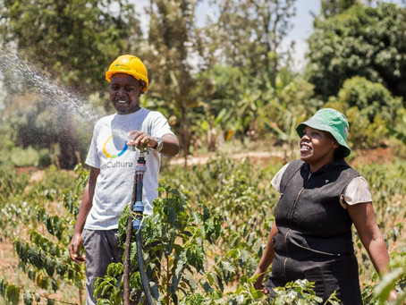 Groundbreaking $11m syndication for SunCulture to expand solar irrigation