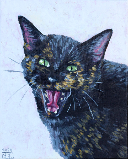 Susy the Screaming Cat
