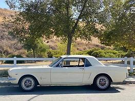 1964 | white