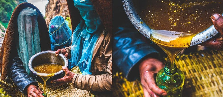 Mad Honey Nepal Breaks the Veil of Secrecy Surrounding Nepalese Mad Honey