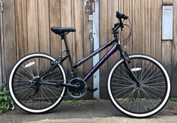 New (and up-graded!) Probike Escape Hybrid